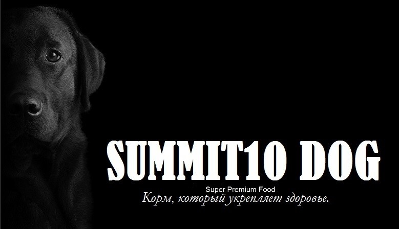 SUMMIT10 DOGS