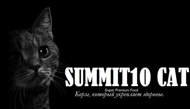 SUMMIT10 CATS